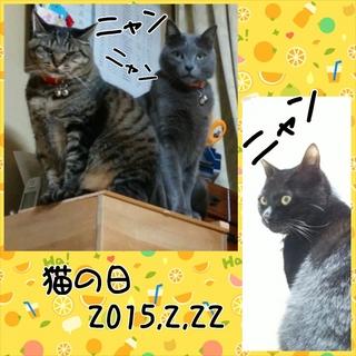 PhotoGrid_1424606204982.jpg
